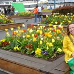 Pier 39 e sua belíssima jardinagem